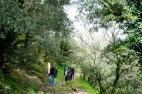 Gonare: pellegrini in ritardo - Foto di Sardegna Terra di Pace - Tutti i diritti riservati