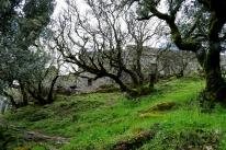 Gonare: Santuario di Nostra Signora - Foto di Sardegna Terra di Pace - Tutti i diritti riservati