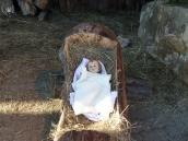 Medjugorje: Gesù Cristo, salvatore del mondo (2) – Foto di Sardegna Terra di Pace – Tutti i diritti riservati