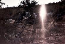 Medjugorje: immagine particolare sul sentiero del Podbrdo – Foto di Sardegna Terra di Pace – Tutti i diritti riservati