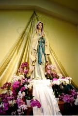 Medjugorje, Anniversario 2015: statua Madonna di Lourdes (3) – Foto di Sardegna Terra di Pace – Tutti i diritti riservati