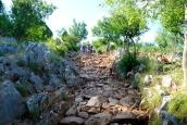 Medjugorje, Anniversario 2015: sentiero per il Podbrdo – Foto di Sardegna Terra di Pace – Tutti i diritti riservati