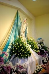 Medjugorje, Anniversario 2015: statua Madonna di Lourdes – Foto di Sardegna Terra di Pace – Tutti i diritti riservati