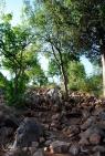 Medjugorje, Mladifest 2015: Sentiero collina apparizioni– Foto di Sardegna Terra di pace – Tutti i diritti riservati