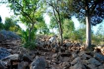 Medjugorje, Mladifest 2015: Sentiero del Podbrdo – Foto di Sardegna Terra di pace – Tutti i diritti riservati