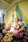 Medjugorje, Esaltazione della Croce 2015: Madonna di Lourdes – Foto di Sardegna Terra di pace – Tutti i diritti riservati
