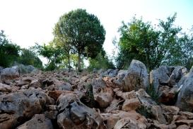 Medjugorje, Esaltazione della Croce 2015: Sentiero della Collina delle Apparizioni (3)– Foto di Sardegna Terra di pace – Tutti i diritti riservati