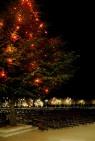 Medjugorje, Capodanno 2016: Addobbi natalizi - Foto di Sardegna Terra di Pace – Tutti i diritti riservati