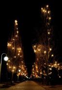 Medjugorje, Capodanno 2016: Viale retrostante la Chiesa: Foto di Sardegna Terra di Pace – Tutti i diritti riservati