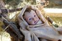 Medjugorje, Capodanno 2017: Gesù bambino (3) – Foto di Sardegna Terra di pace – Tutti i diritti riservati