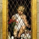 Roma, Capodanno 2017: Gesù bambino – Foto di Sardegna Terra di pace – Tutti i diritti riservati